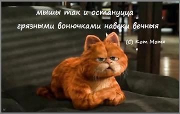Блог Кота Моти  - Страница 3 EptC3T3XcAIgWqi