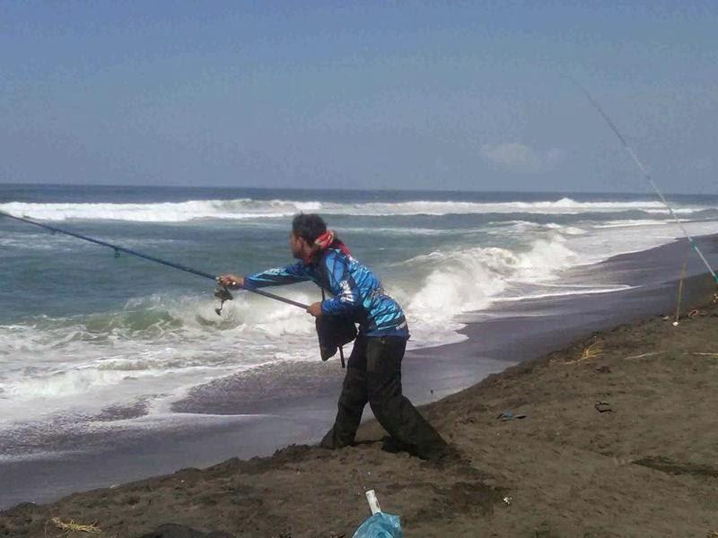 Ikan Rata Rata Memang Keberuntungan Memancing Di Laut Adalah Ikannya