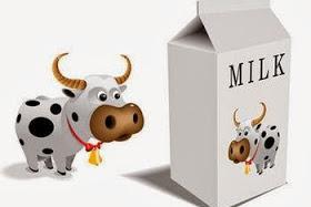 Mengapa Harus Minum Susu Sapi? Apa baik Minum Susu Sapi Setiap Hari?