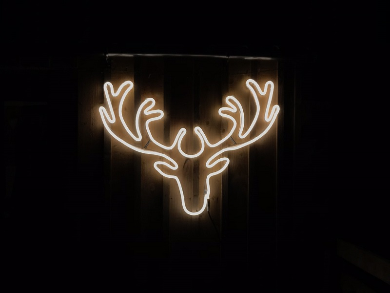 Deer shaped light on the Bothy