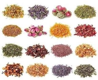 Описание, чем полезны травяные и ягодные чаи