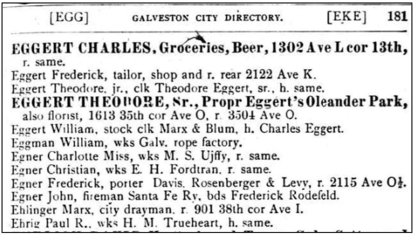 Ancestorpuzzles william c eggert pilot and ship captain 1893 galveston city directory aiddatafo Image collections