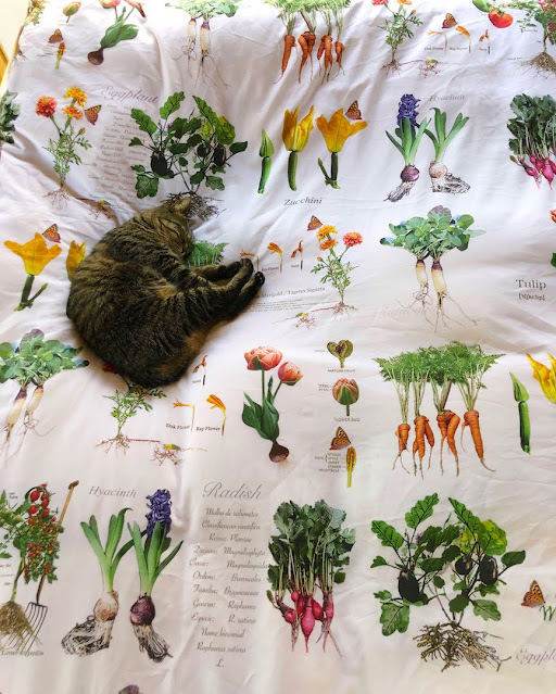 Your vegetables growing under the snow, but you grow on the bed.