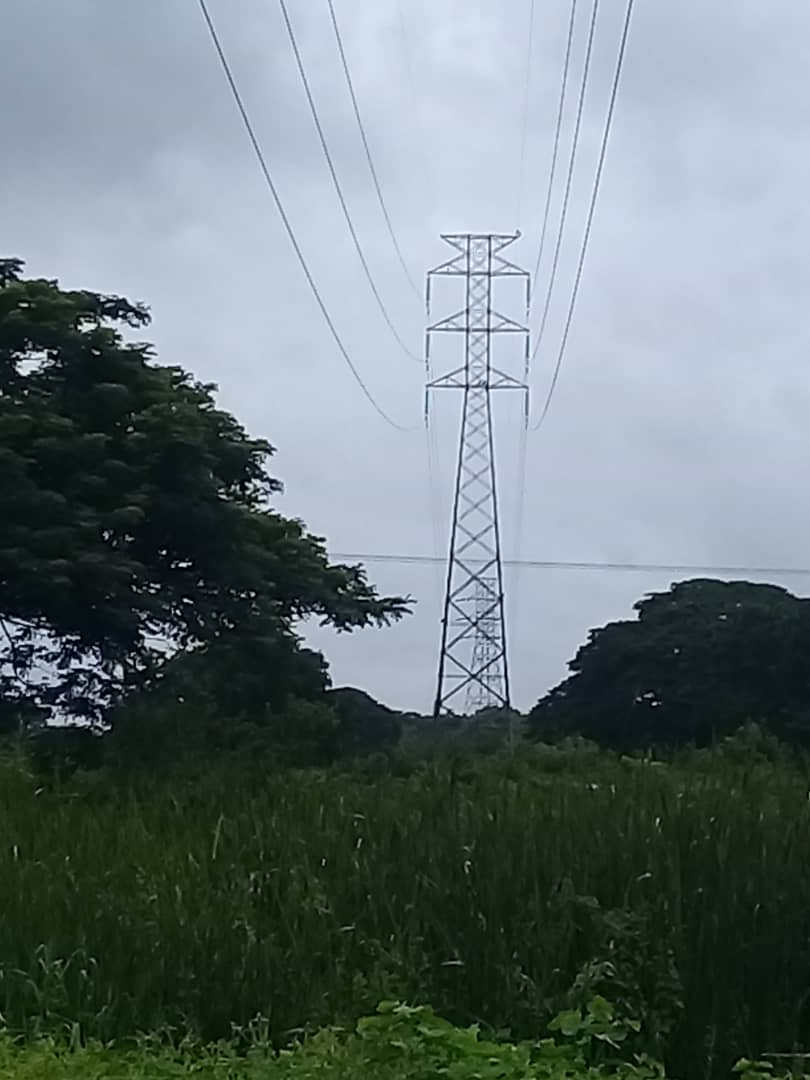 APURE: Equipo de CORPOELEC en Apure realiza control de vegetación en torres de líneas de Transmisión.