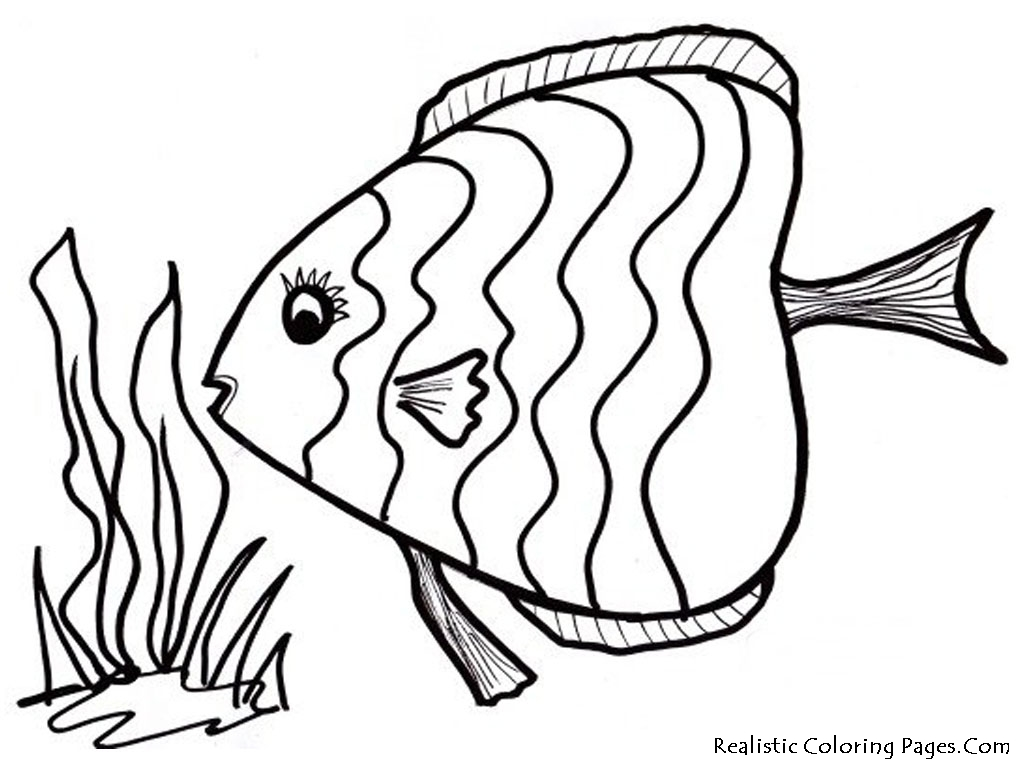 Ocean fish coloring pages realistic coloring pages for Color pages of fish
