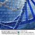 كيف تدرس علم «المعلوماتية الحيوية - Bioinformatics»