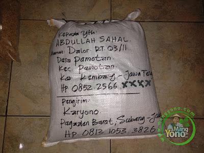 Packing benih padi pesanan  ABDULLAH SAHAL Rembang, Jateng