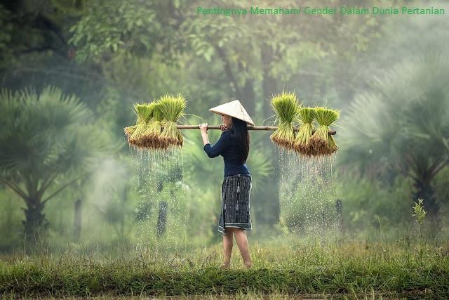 Pentingnya gender dalam pertanian