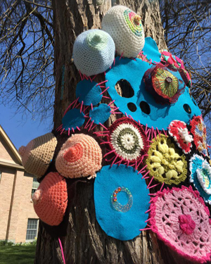 yarnbomb tree yellow springs ohio