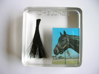 Horse hair and photo paperweight