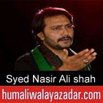 https://humaliwalaazadar.blogspot.com/2019/08/syed-nasir-ali-shah-noha-2020.html
