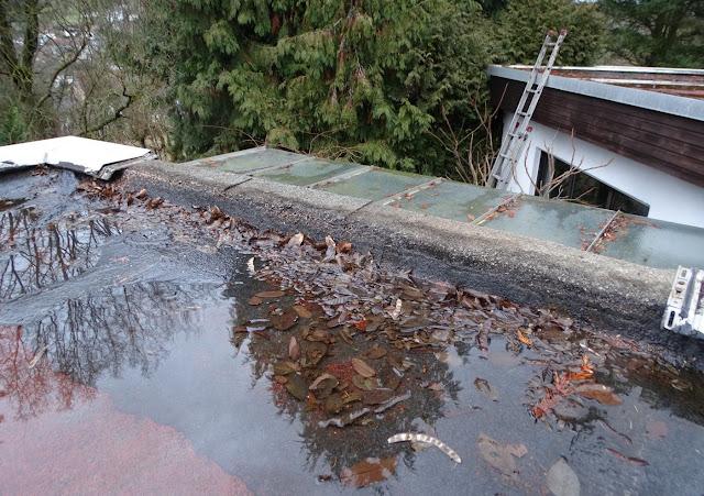 Dachpe Der Flachdach Bedeckung Ist An Den Rändern über Oberkante Aussenmauer Gelegt Was Dazu Führt Dass Bei Ansteigendem Wasserpegel Auf
