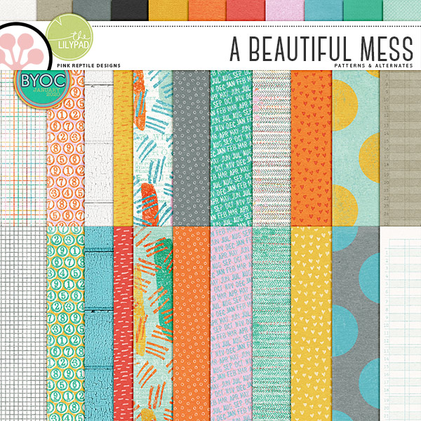 https://the-lilypad.com/store/A-Beautiful-Mess-Papers.html