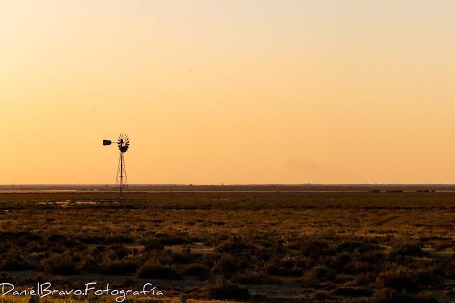 Paisaje del Parque Nacional de Doñana al atardecer con molino de viento
