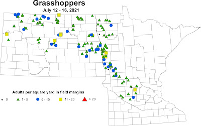 Map of grasshopper densities at soybean fields visited in Minnesota and North Dakota