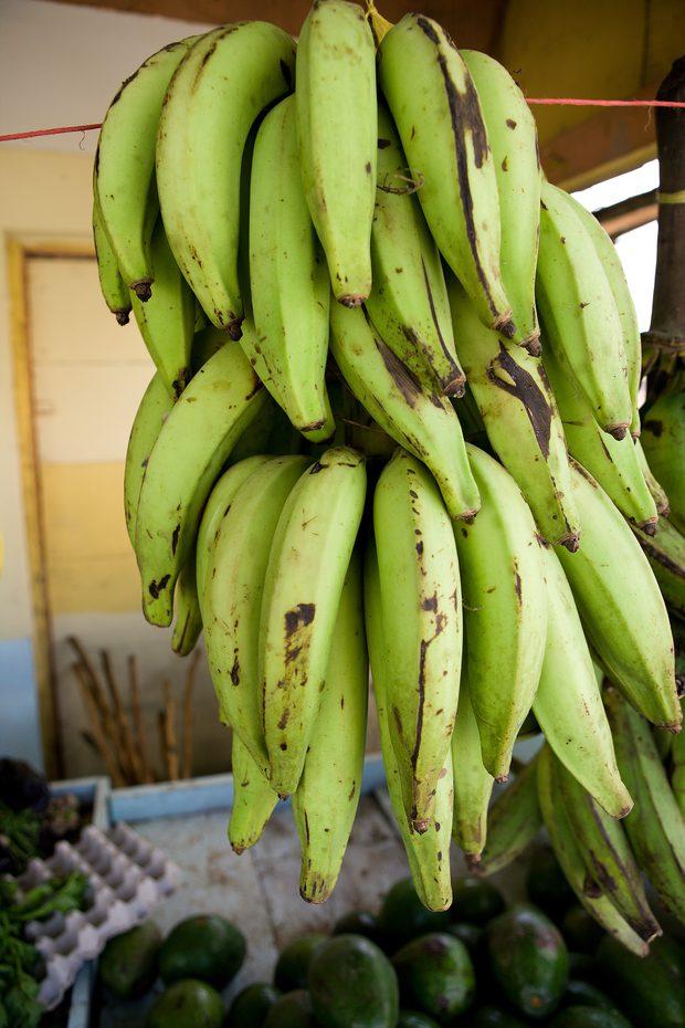 #Banana-da-terra