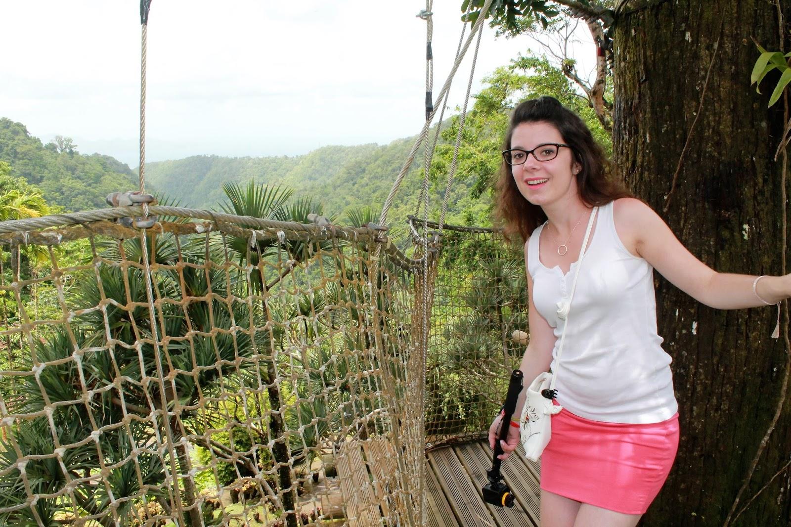 jardin de balata martinique parcours dans les arbres