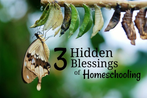 3 Hidden Blessings of Homeschooling