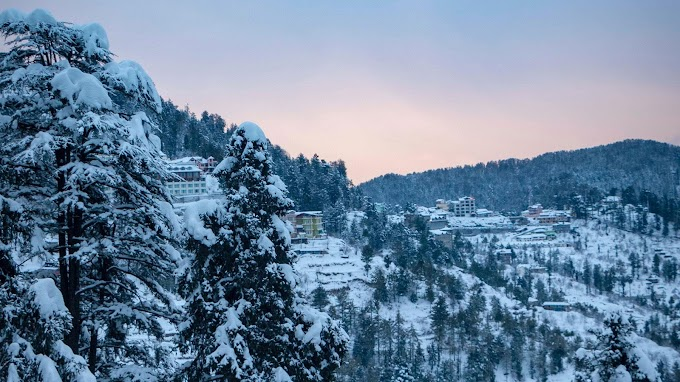 Latest top 15 places to visit in Shimla – Best travel guide