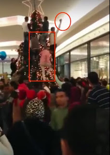 Muslims_See_A_Christmas_Tree_Being_Setup