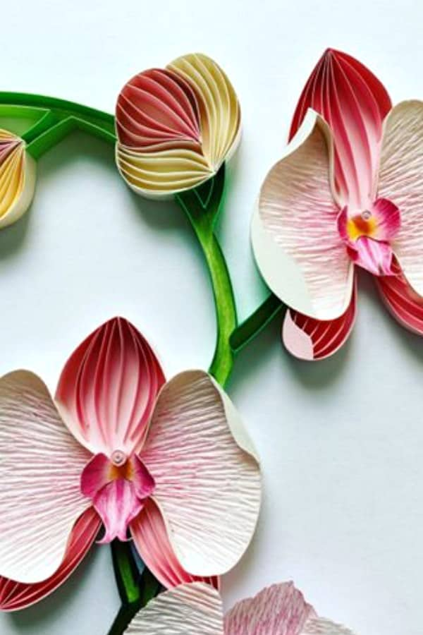 on-edge paper art orchid