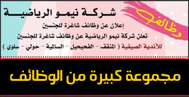 وظائف شركة نيمو الكويتية لادرة الاندية الصيفية