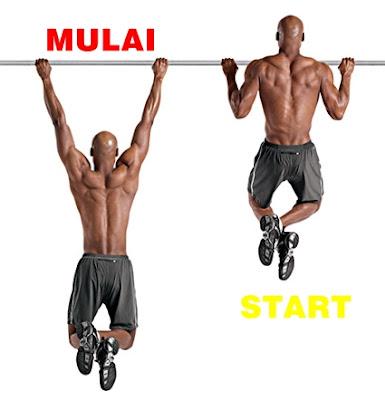 gerakan yang sering dilakukan untuk pembentukan otot bahu