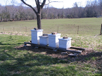 four beehives