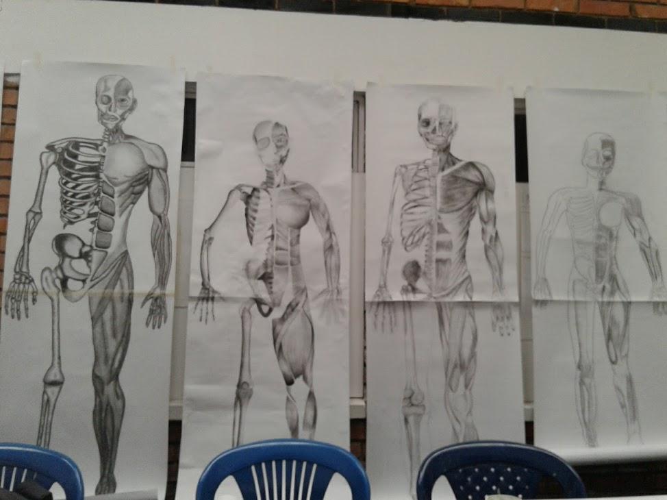 Clases de Dibujo Artístico ; Anatomía Humana - Lili Daza Diseño