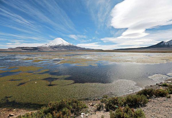 Chungará Este lago es una de las postales más reconocibles del Parque Nacional Lauca