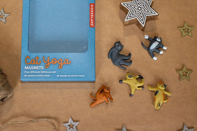 5 small cartoon style model cats in a variety of yoga poses next to a box which says cat yoga magnets