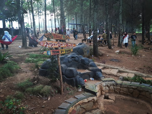 Pesona Jati Ciwangi Pjc Tempat Wisata Di Kab Garut