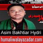 https://humaliwalaazadar.blogspot.com/2019/08/asim-bakhtiar-hydri-nohay-2020.html