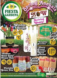 Fiesta Farms Flyer April 14 - 20, 2018