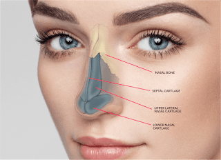 Why ML Cosmetic Surgery Istanbul