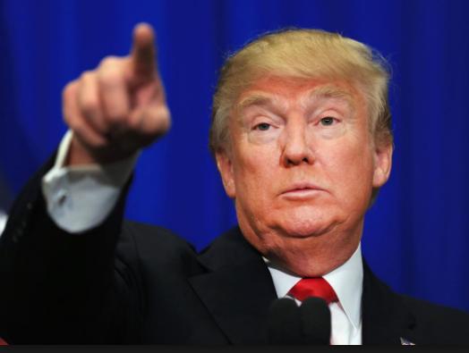 Heboh dan Gempar ! Ada Buaya Berwarna Orange, Orang Memberi Nama Trump-a-gator, Kenapa ?
