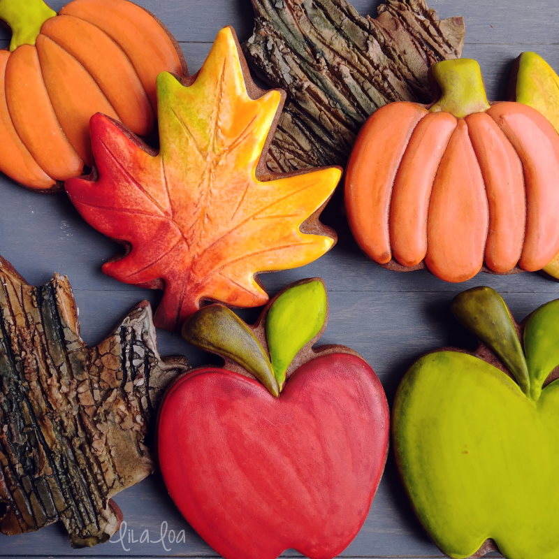 Brightly colored fall decorated chocolate sugar cookies - apples, pumpkins, leaves, bark texture