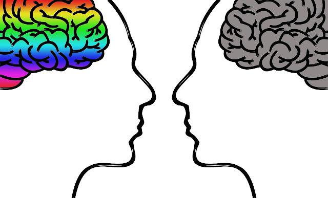 Başarı İçin Duygusal Zeka Mı Yoksa IQ Mu Daha Önemli