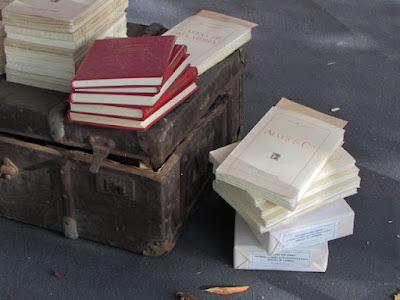 livros empilhados em uma mala antiga