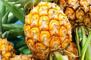 Riwayat Maag, Bolehkah Makan Nanas atau Tidak?