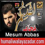 http://www.humaliwalayazadar.com/2012/11/mesum-abbas-nohay-2001-2013.html