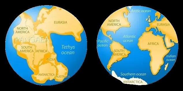 earth around 250 million years ago