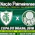 Jogo América-MG x Palmeiras Ao Vivo 09/05/2018 [Narração]