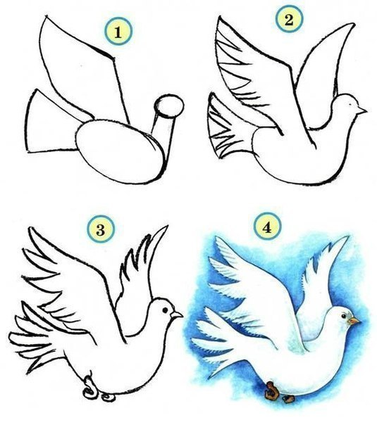 Bird Drawing Ideas Easy Step by Step Drawing for Kids