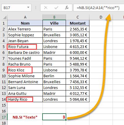 Critère avec nom entre deux astérisques dans NB.SI