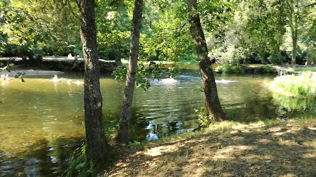 Zona Fluvial do parque de Lazer de Felinhos