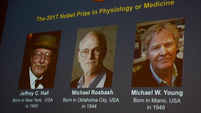 ¿Quiénes son los ganadores del premio Nobel de Medicina 2017?