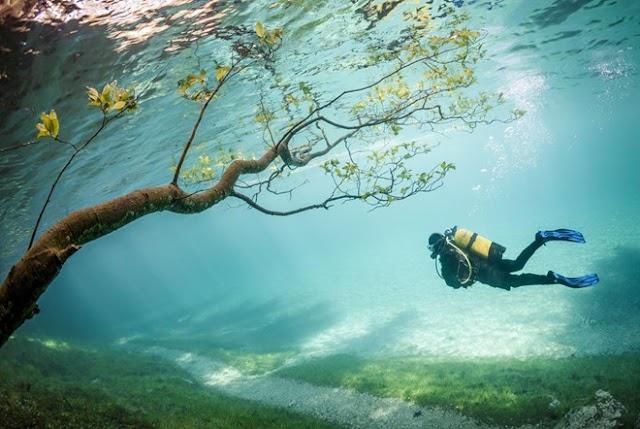 Picturesque underwater paradise