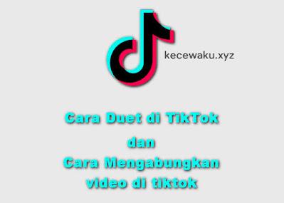 Cara Duet Video di TikTok