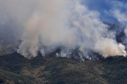 Makin Parah, Sayed Abubakar Minta Riau Ditetapkan Status Darurat Bencana Asap